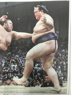 揺れる大相撲。